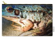 Blue Frog Carry-all Pouch