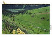 Blue Grouse Pass, Willmore Wilderness Carry-all Pouch
