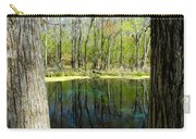 Blue Hole Springs Florida Carry-all Pouch