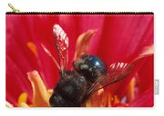 Blue Orchard Bee Carry-all Pouch by Scott Bauer