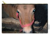 Blue Pony Eyes Carry-all Pouch