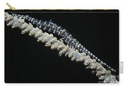 Blue Sawtooth Shrimp On Whip Coral Carry-all Pouch
