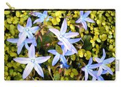 Blue Star Flowers Carry-all Pouch
