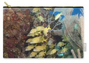 Blue Striped Grunts Schooling Carry-all Pouch