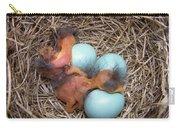 Bluebird Hatch Carry-all Pouch