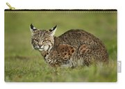 Bobcat Juvenile Santa Cruz California Carry-all Pouch by Sebastian Kennerknecht