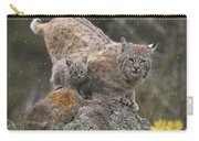 Bobcat Mother And Kitten In Snowfall Carry-all Pouch by Tim Fitzharris