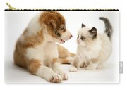 Border Collie And Birman-cross Kitten Carry-all Pouch by Jane Burton