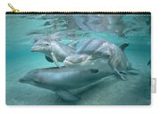 Bottlenose Dolphin Underwater Trio Carry-all Pouch