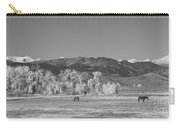 Boulder County Colorado Front Range Panorama With Horses Bw Carry-all Pouch
