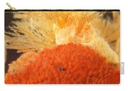 Bowerbanks Halichondria & Spiral-tufted Carry-all Pouch by Ted Kinsman