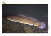 Bowfin Amia Calva Swims The Murky Carry-all Pouch