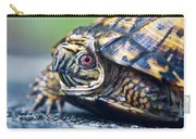 Box Turtle 1 Carry-all Pouch