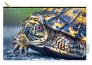 Box Turtle 2 Carry-all Pouch