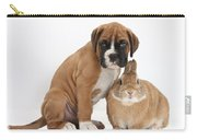 Boxer Puppy And Netherland-cross Rabbit Carry-all Pouch by Mark Taylor