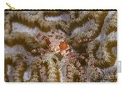 Boxing Crab In Raja Ampat, Indonesia Carry-all Pouch