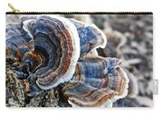 Bracket Fungi - Fungus Carry-all Pouch