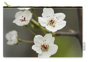 Bradford Callery Pear Tree Blossoms - Pyrus Calleryana Carry-all Pouch