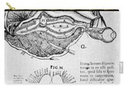 Brain And Pineal Gland Carry-all Pouch