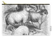 Breeds Of Sheep, 1841 Carry-all Pouch