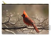 Bright Bold - Cardinal Carry-all Pouch