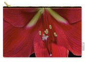 Bright Rose Amaryllis Carry-all Pouch