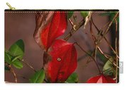 Brilliant Greenbrier 1 Carry-all Pouch
