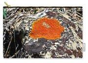Brilliant Orange Lichen Carry-all Pouch