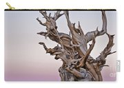 Bristlecone Pine - Early Morning - 1 Carry-all Pouch