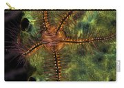 Brittle Star On Sponge, Belize Carry-all Pouch
