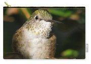 Broadbill Hummingbird Carry-all Pouch