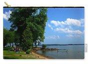 Brockville Beach Dream Carry-all Pouch