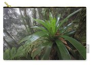 Bromeliad And Tree Ferns Colombia Carry-all Pouch
