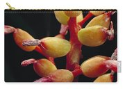 Bromeliad Detail Brazil Carry-all Pouch