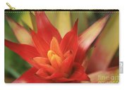 Bromeliad Carry-all Pouch by Sharon Mau