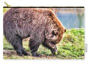 Brown Bear 201 Carry-all Pouch