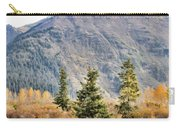Brown Bear 207 Carry-all Pouch