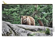 Brown Bear 209 Carry-all Pouch