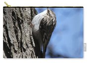 Brown Creeper Carry-all Pouch