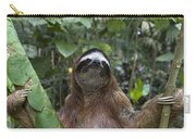 Brown Throated Three Toed Sloth Male Carry-all Pouch by Suzi Eszterhas