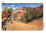 Bryce Canyon Canyon Carry-all Pouch