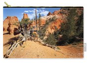 Bryce Canyon Forest Carry-all Pouch