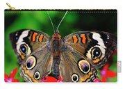 Buckeye Buttterfly Carry-all Pouch