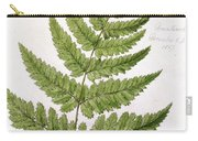 Buckler Fern Carry-all Pouch