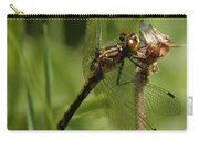 Bug Eyed Dragon Fly Carry-all Pouch