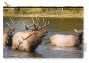 Bugling Bull Elk And 2 Female Cows In Estes Lake  Co Carry-all Pouch