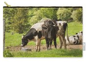 Bull And Cows Grazing On Grass In Farm Maine Carry-all Pouch