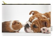 Bulldog Pup Face-to-face With Guinea Pig Carry-all Pouch