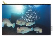 Bumphead Parrotfish Carry-all Pouch