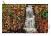 Bushkill Main Falls Carry-all Pouch